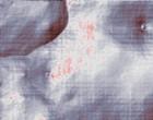 foerderung anti grafitti programm